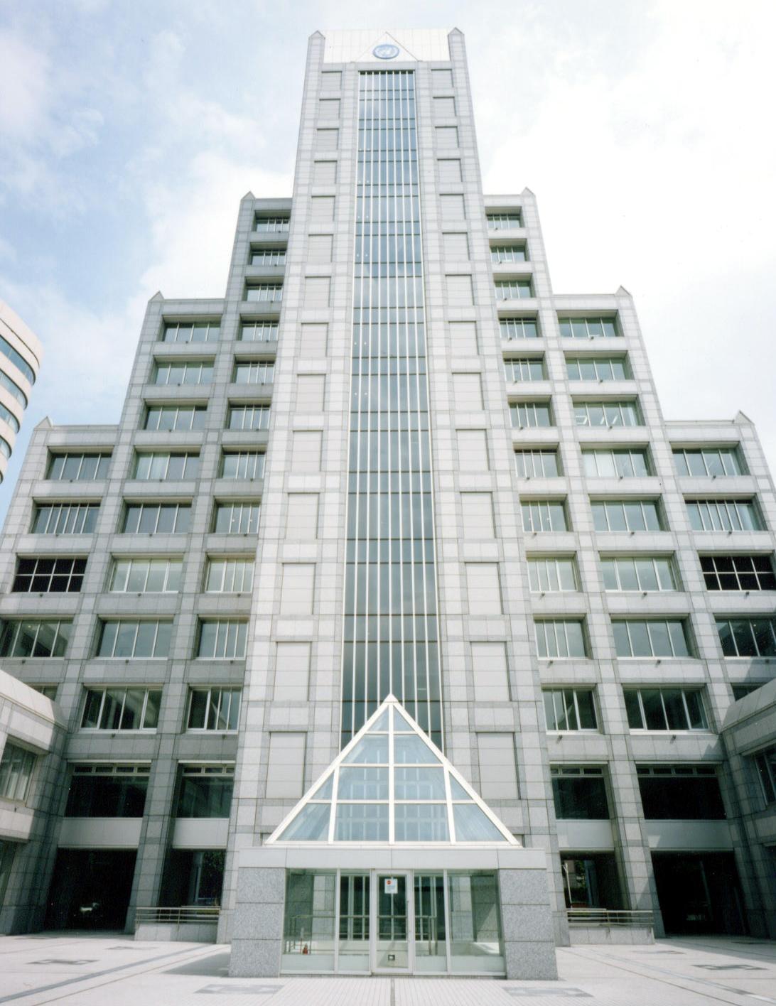 大学 国連