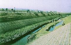 巨椋池干拓地 植栽・クリーン活動