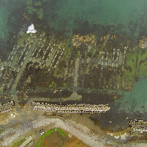 沿岸漁業トータルサポート